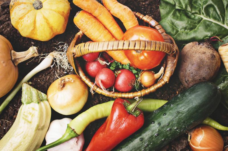 食材宅配とネットスーパーを徹底比較!3つの違いで選びやすい♪